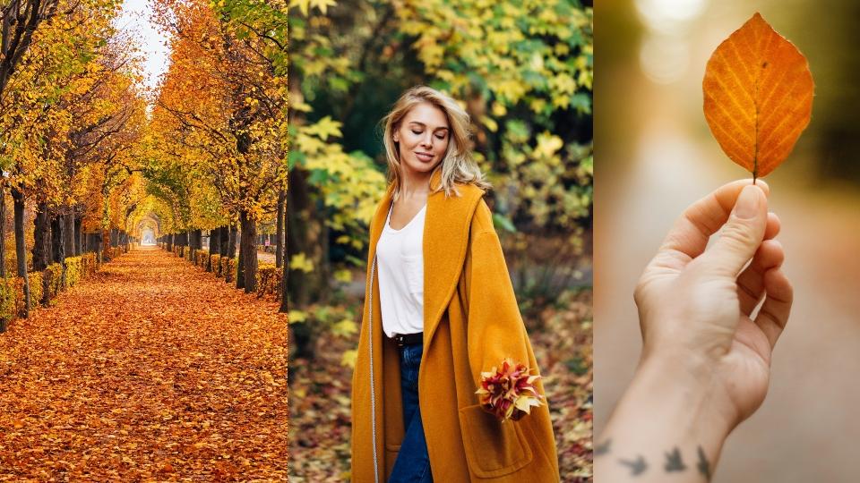 есен дневен седмичен