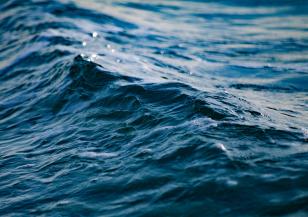 МОСВ продължава да следи състоянието на морската вода край Камен бряг