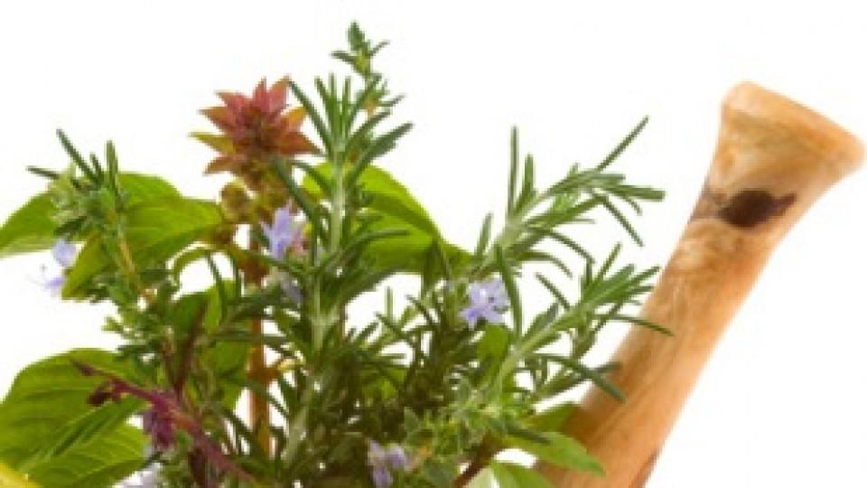 Рецепти на баба Ванга за болести, започващи с Н