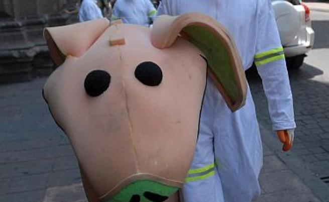 Свинският грип може да се окаже не толкова страшен