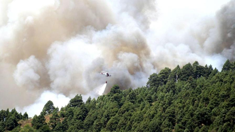 200 хил. хектара гори в ЕС жертва на пожари през 2009-а