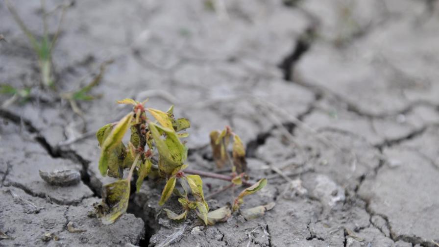 Климатичните промени носят риск за сигурността