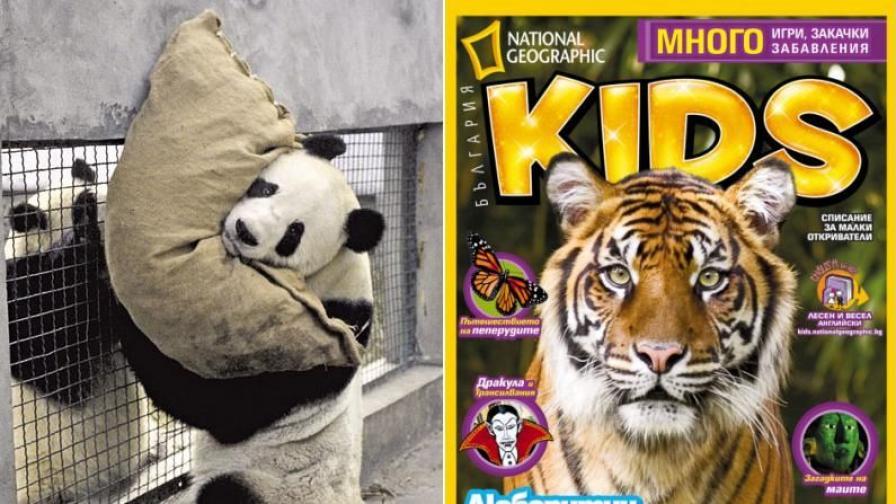 NGKids за игрите на животните в зоопарка
