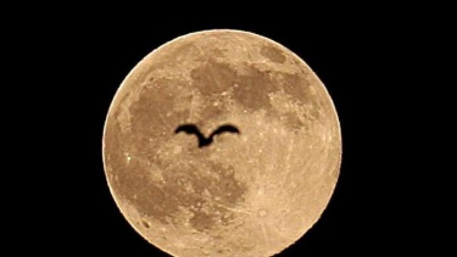 Посрещаме 2010 г. със синя луна
