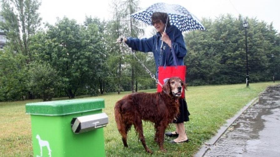 В София обособяват кучешки паркове