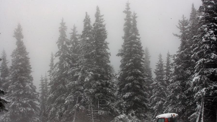 Висока киселинност в снега на Витоша