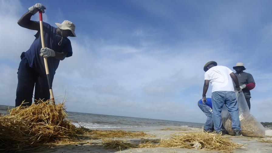 С торф срещу петролния разлив в Мексиканския залив