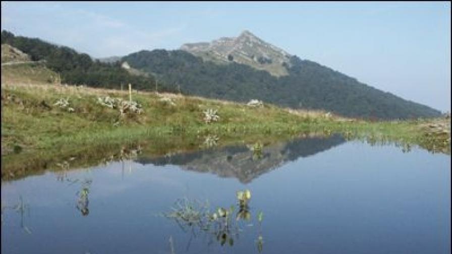 """Националният парк """"Централен Балкан"""" получи Европейска диплома за защитени територии"""