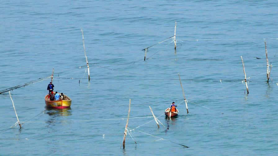 Бургазлия улови отровна риба, произвеждаща ток