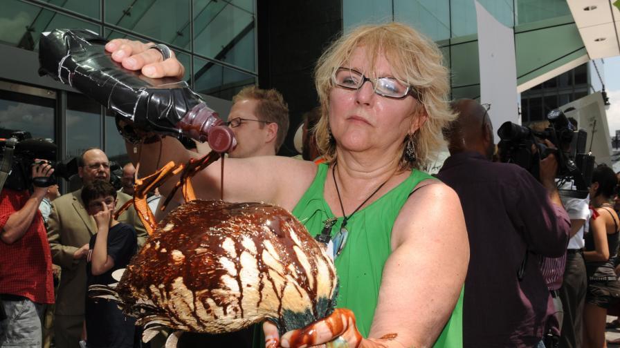 Активистка полива патица играчка с шоколадов сироп по време на протест срещу БП във Вашингтон