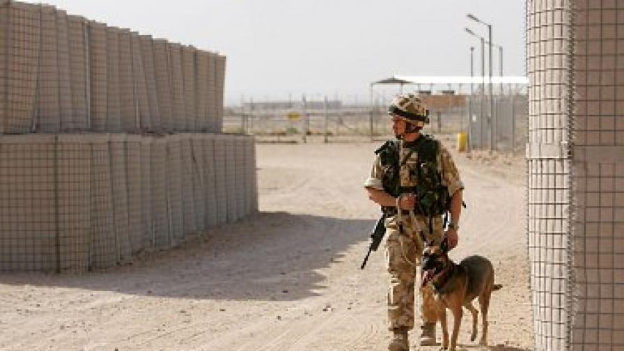 Военни кучета се връщат от Ирак травмирани
