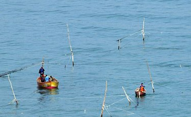 Рекордните градуси на морската вода намаляват улова на риба