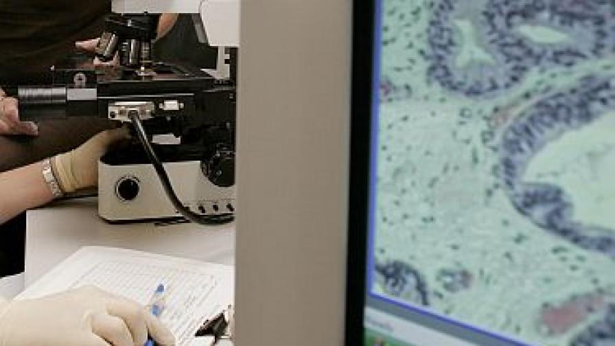 Салмонелата - новият лек срещу рака?