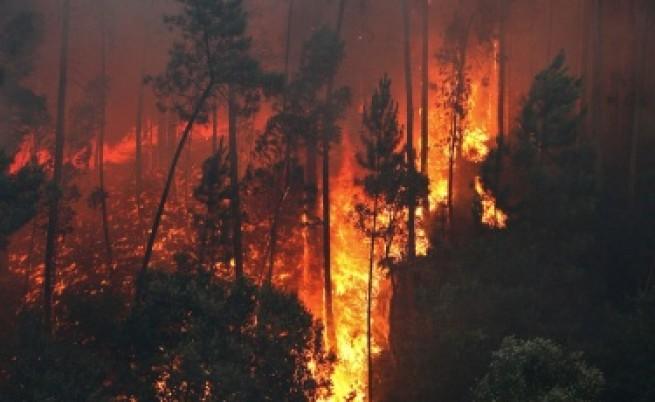 Българските пожарникари си дойдоха от Русия