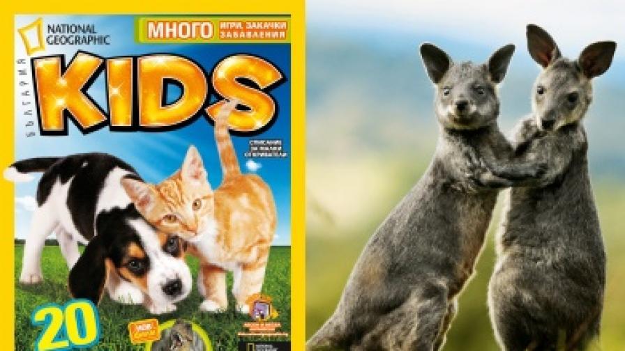 NG Kids класира 20-те най-сладурски животни