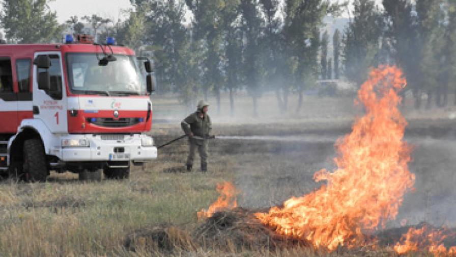 Пожари на Витоша и Осоговска планина