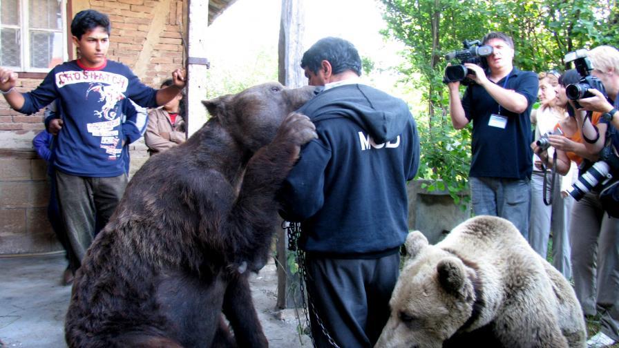 10 години дом за танцуващите мечки