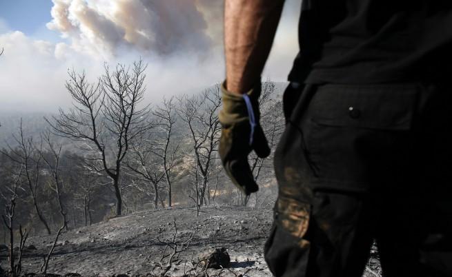 По 1000 лв. на огнеборците, работили в Израел