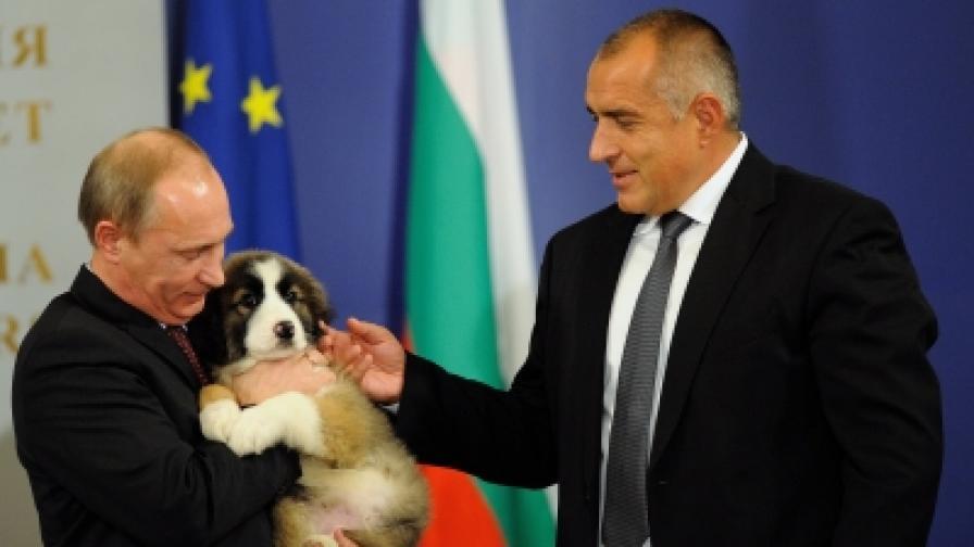 В София кучетата са част от дипломацията
