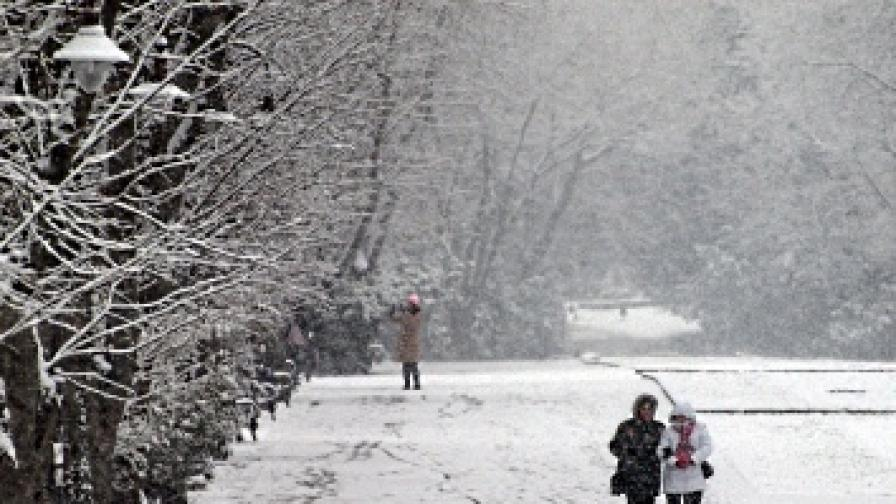 Студ до минус 17 градуса през февруари