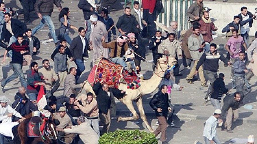 """Има сведения и че хората на площад """"Тахрир"""" са били атакувани от нападатели на коне и камили, въоръжени с колове"""