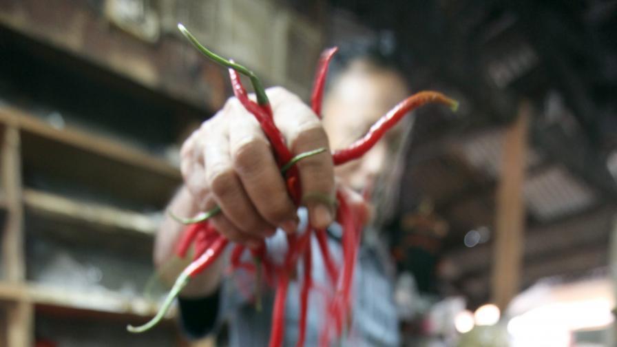 Учени определиха Мексико като родината на  лютата чушка