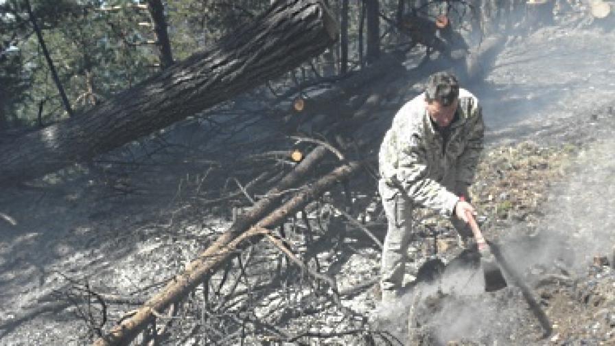 Пожарът край Банско е потушен