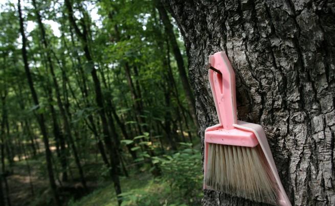 Събраха с 20% по-малко боклук от парковете