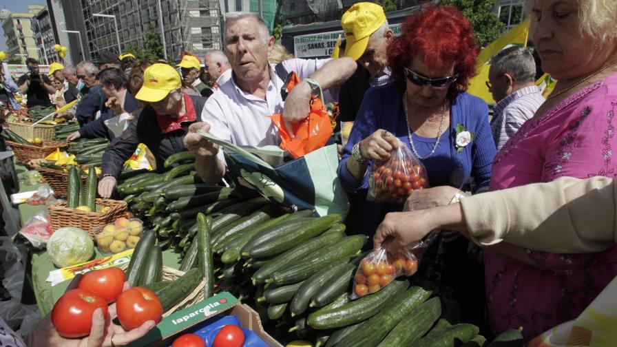 2,5 млн. евро загубили наши зеленчукопроизводители заради Ешерихия коли