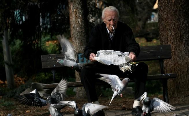 До 10-20 години в София ще е пълно с гларуси