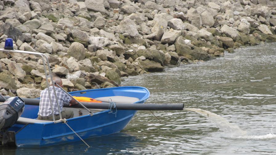 Черната търговия с хайвер заплаха за есетровите риби в Дунав