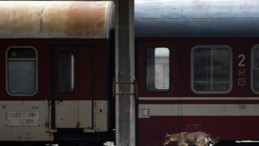 Днес не са пътували  201 от общо 261 пътнически влака