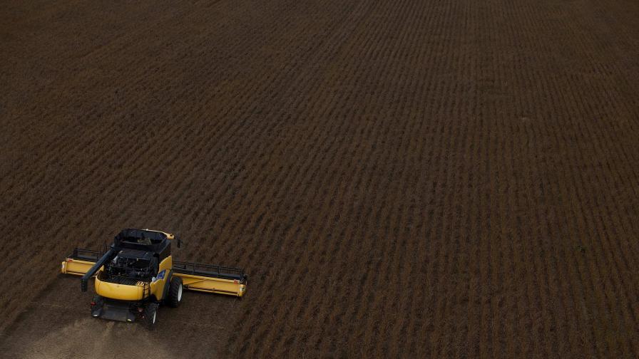 Проби разкриват над 5% ГМО соя във фуражи