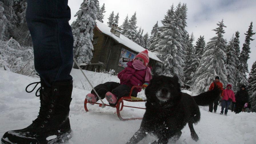 Ски любители откриха неофициално сезона на Витоша