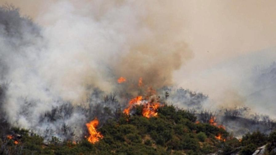 Доклад: Турци наистина са палели горите в Гърция