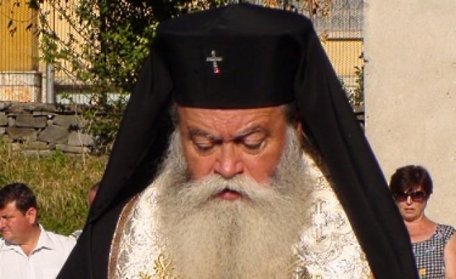 Синодът не бил против ин витрото