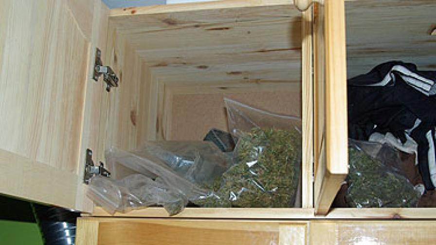 Канабис в гардероб