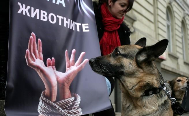 Деца искат оставката на зам.-кмета на София