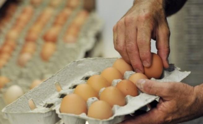 Защо поскъпват яйцата