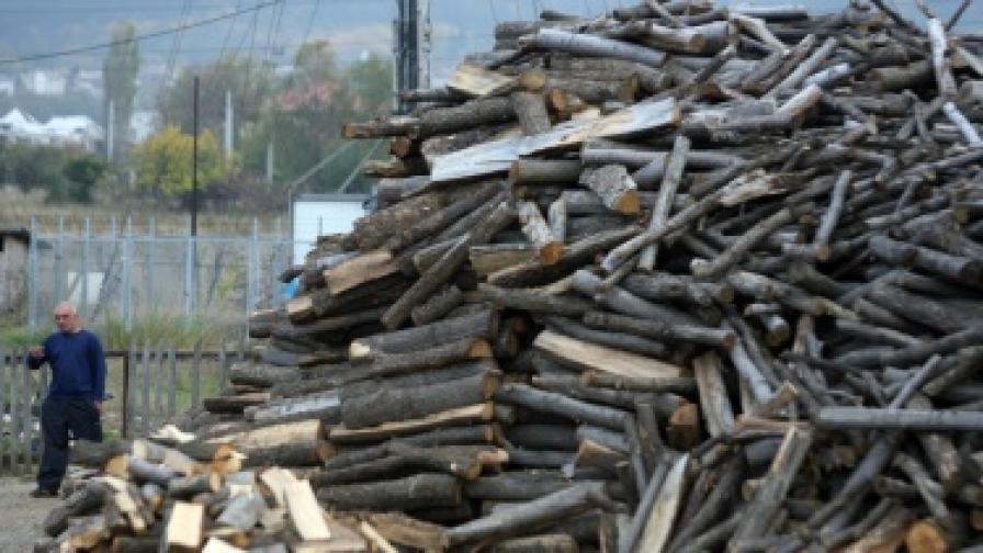 Найденов се отказа от продажбата на дървесина през борсата