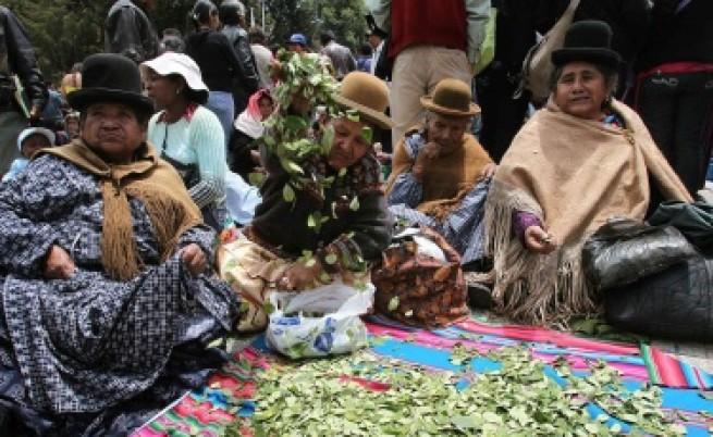 Моралес: Коката в Боливия е традиция