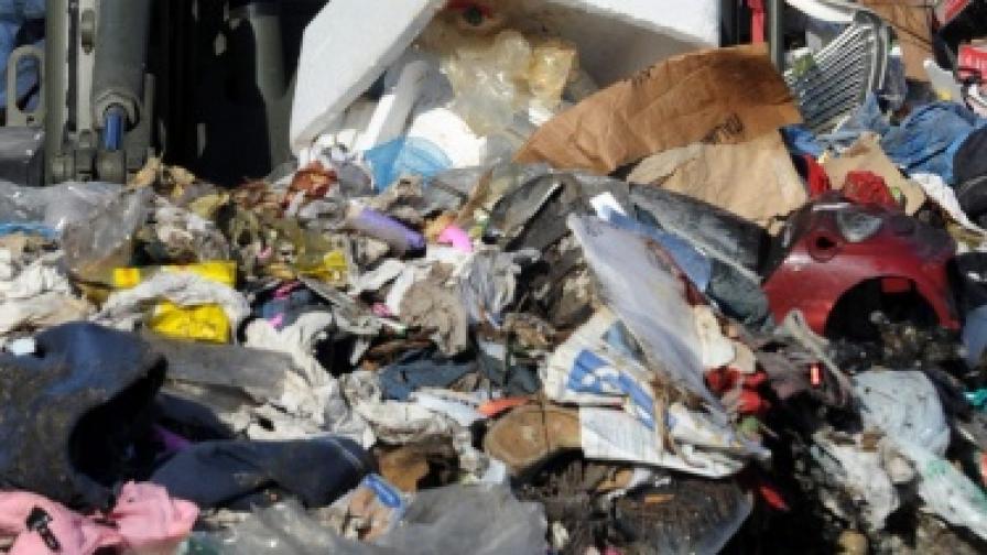 Йоханесбург: Кукумявки срещу плъховете