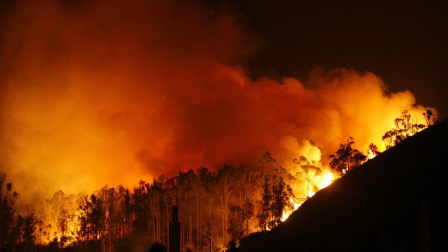 """Горски пожар опустошава """"екологично бижу"""" в Испания"""