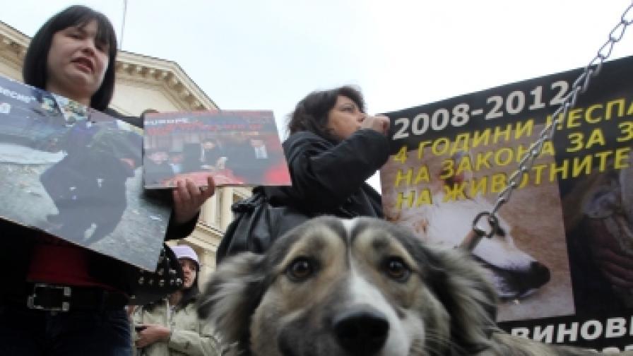 Преди да се разберат в Министерския съвет с управляващите, защитниците на кучета искаха оставка на министър Мирослав Найденов