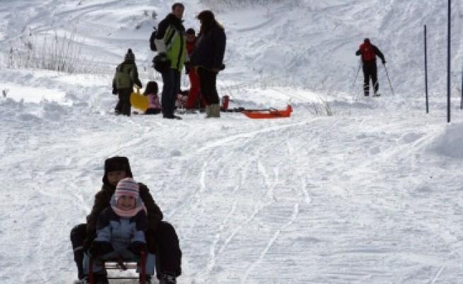 Лифтове, ски писти и влекове ще се изграждат в гори след търг