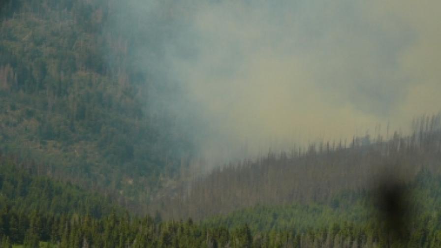 Потвърждават: Пожарът на Витоша е потушен