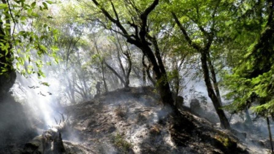 Нови горски пожари