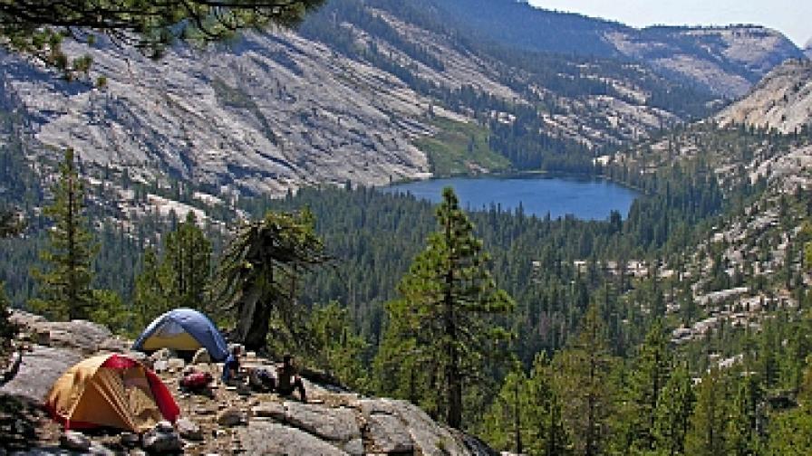 Смъртоносен вирус застрашава почивали в парка Йосемити