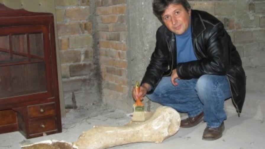 Раменната кост на мамут е била запазена в нанос от баластра и льос
