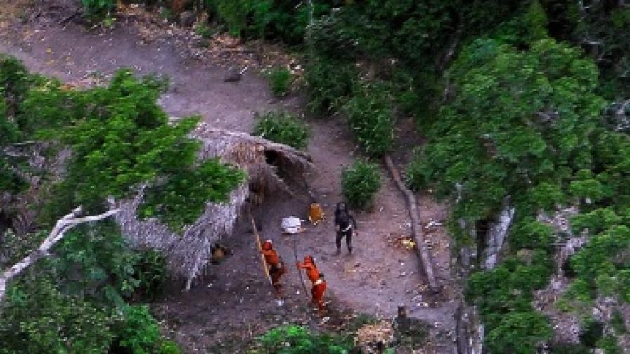 Изсичането на амазонските гори намаляло рекордно